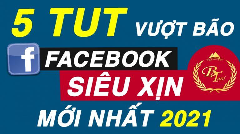 5 TUT Vượt Bão Facebook - Xanh Xanh và Xanh